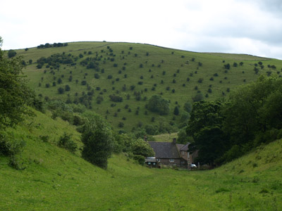 Dale Farm backed by the thorn-dappled Ossom's Hill